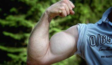 aumentare la muscolatura