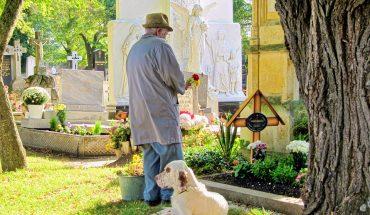 Cimiteri per animali